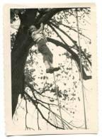 Eleanor Morse bio