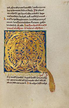 gold manuscript