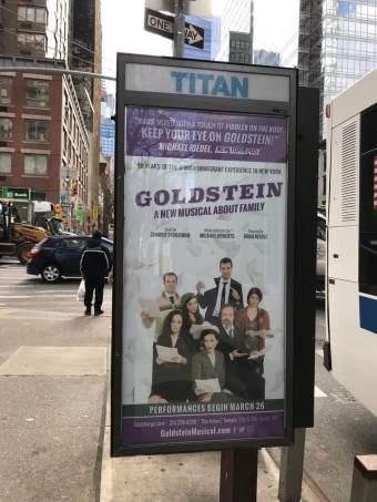 Goldstein 2